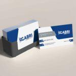 Criação de cartão de visita para empresa de transporte